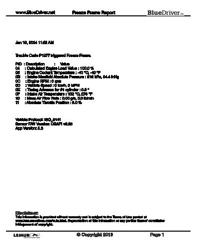 Sample-BlueDriver-Freeze-Frame